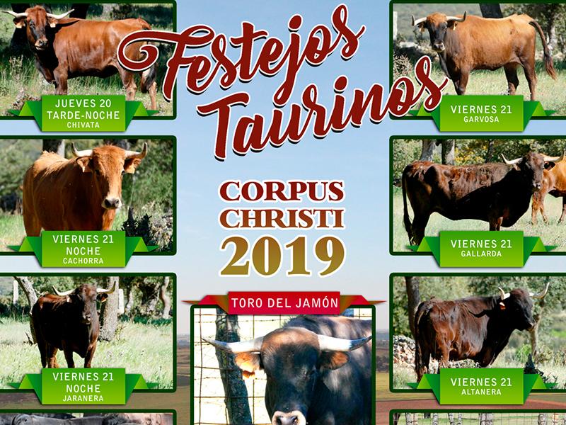 Festejos Taurinos Corpus Christi 2019