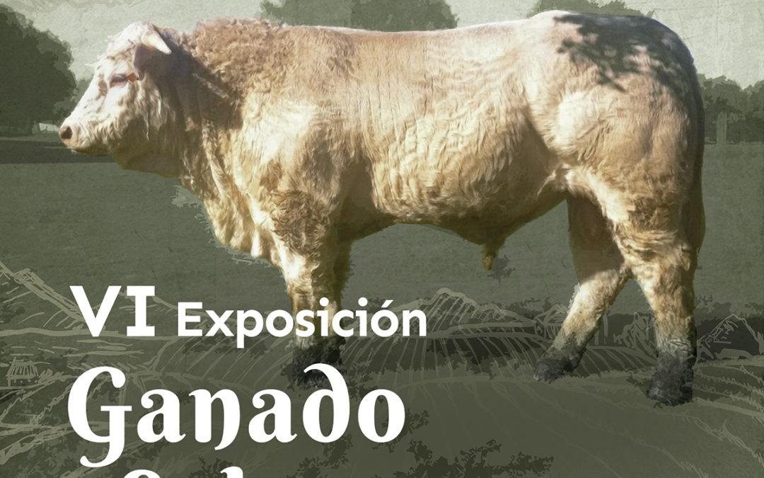 VI Exposición del ganado selecto en La Fuente de San Esteban
