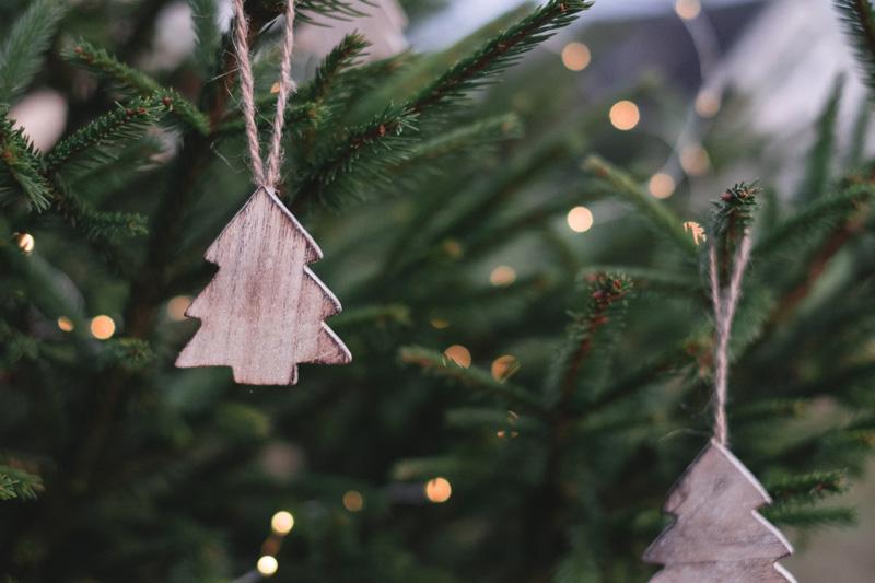 Programa de actividades Navidad 2019